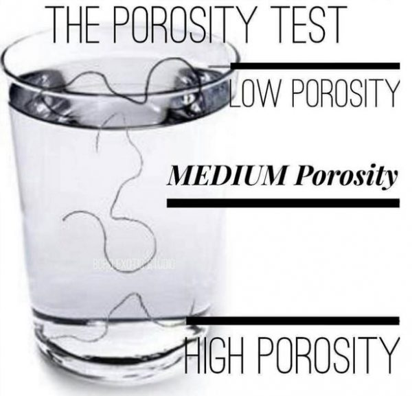 What is Hair Porosity?