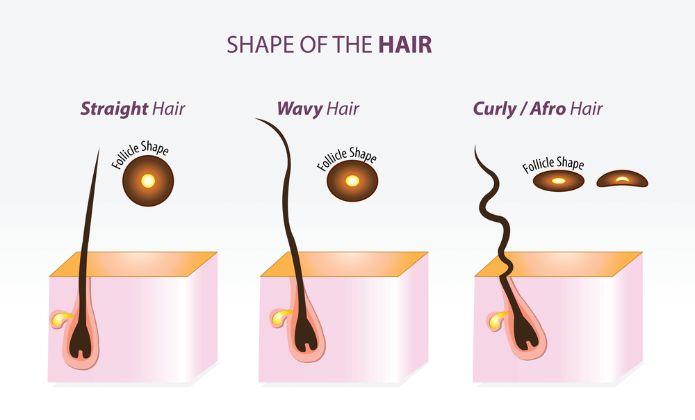 Afro Hair Shape Sebum Breakage FroHub