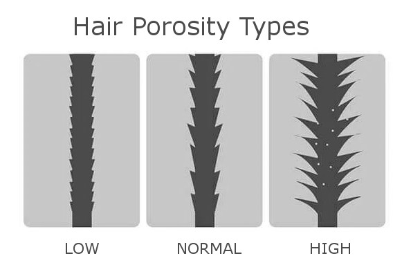 High Low Normal Porosity Afro Natural Hair FroHub